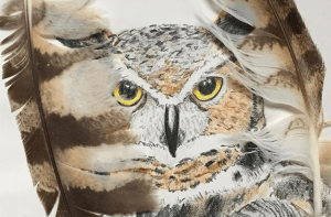 colored-pencil-drawing-of-great-horned-owl-with-feathers-framing-sides-of-paper