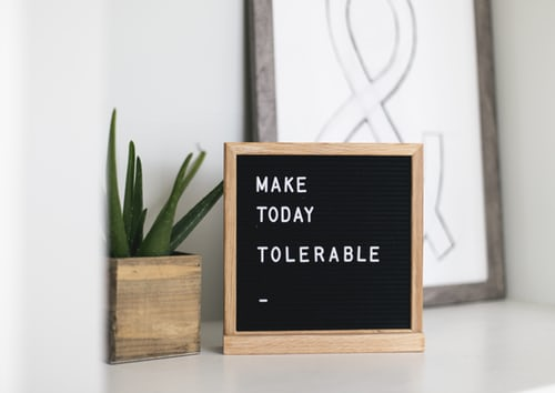 small black sign with white letters reading make today tolerable with succulent in wooden container next to sign