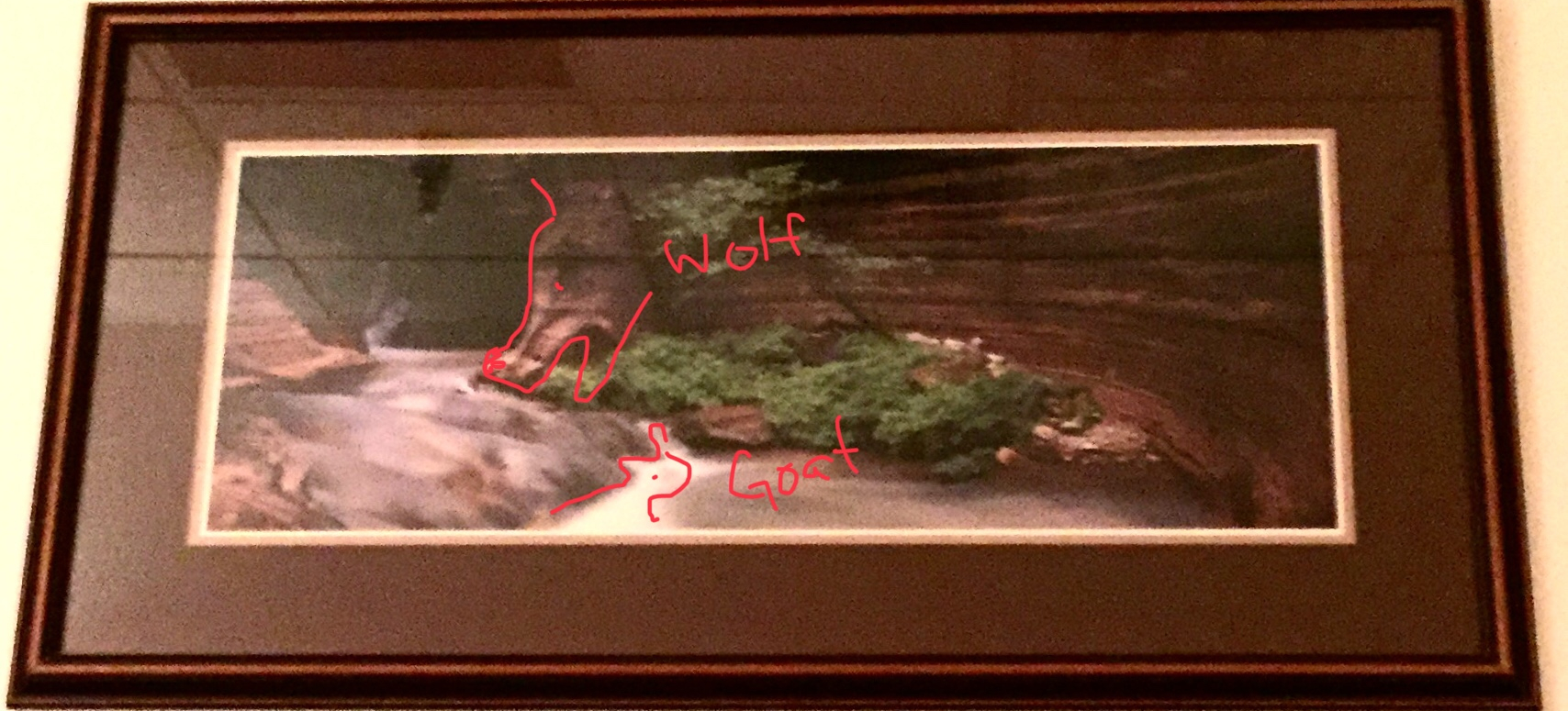 framed photo of river flowing through canyon with shapes of wolf and mountain goat outlined in red