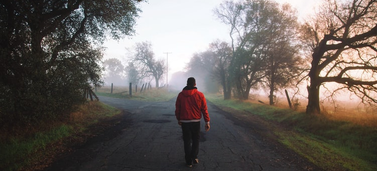 man-in-red-hoodie-and-dark-pants-walking-away-from-camera-down-paved-rural-road-on-foggy-morning-near-trees
